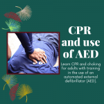 CPR and Use of AED (Adult)